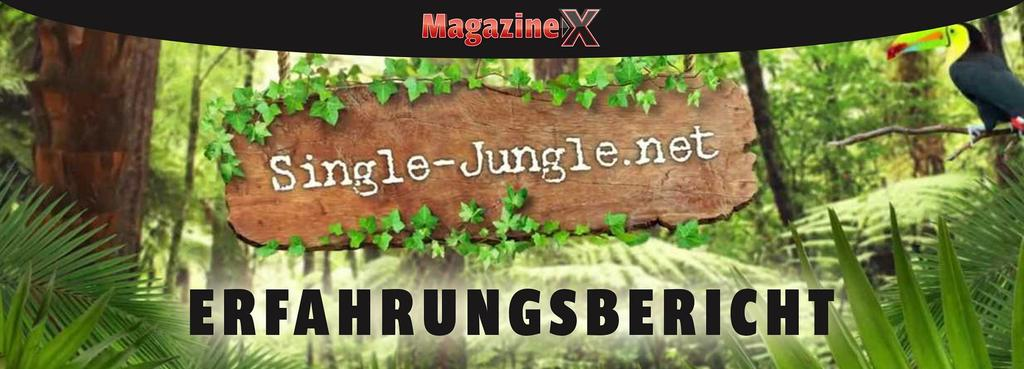 single-jungle erfahrungen